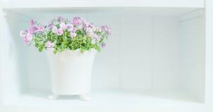 Flores bastante púrpuras en el pote blanco en estante Decoración casera floral ligera fotografía de archivo