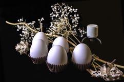 Flores blancas con los huevos blancos y la pequeña botella negra y conchas marinas en un fondo negro Fotos de archivo libres de regalías
