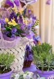 Flores blancas de la lavanda vistas cerca para arriba Imagen de archivo libre de regalías