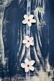Flores blancas de la pasta de azúcar en cinta rosada Imagen de archivo
