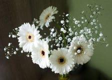 Flores blancas en florero Foto de archivo