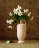 Flores blancas en florero Fotografía de archivo