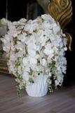Flores blancas en un florero Imagen de archivo