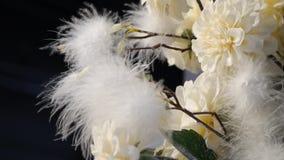Flores blancas románticas - primavera florece - fondo de la floración de la primavera almacen de video