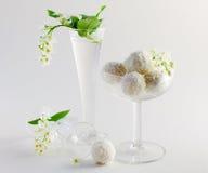 Flores blancas y candie Fotografía de archivo