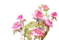 Flores bonitas Fotos de Stock Royalty Free