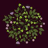 Flores bonitas ajustadas, ilustração do vetor ilustração royalty free