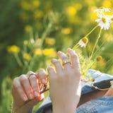 Flores bonitas da camomila da posse das mãos da menina Imagens de Stock Royalty Free