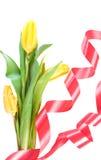 Flores bonitas da mola Foto de Stock Royalty Free