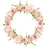Flores bonitas da rosa do branco no quadro redondo Fotos de Stock