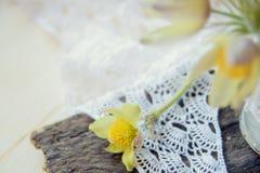 Flores bonitas 8 de março cartão do dia das mulheres Snowdrops do ramalhete no fundo de madeira Imagem de Stock