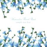 Flores bonitas do azul da aquarela Foto de Stock Royalty Free
