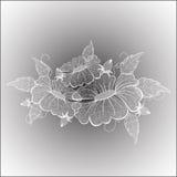 Flores bonitas do laço branco ilustração royalty free