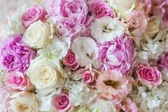 Flores bonitas E Foto de Stock