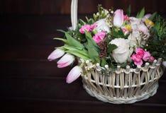 Flores bonitas e delicadas Imagem de Stock