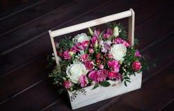 Flores bonitas e delicadas Fotos de Stock Royalty Free