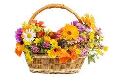 Flores bonitas em uma cesta imagens de stock