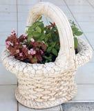 Flores bonitas em uma cesta, estilo do vintage Imagens de Stock