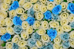 Flores bonitas fundo e textura para a cena do casamento Foto de Stock