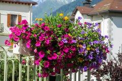 Flores bonitas no balcão foto de stock