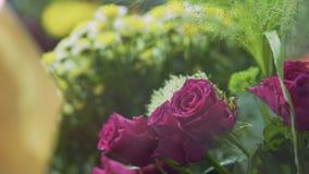 Flores bonitas no fim da loja de flores acima Movimentos do foco através das flores do primeiro plano ao fundo vídeos de arquivo