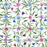 Flores bonitas pequenas com as folhas no fundo branco Centáureas brilhantes no teste padrão sem emenda da verificação Pintura da  Imagens de Stock Royalty Free