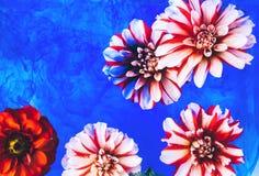 Flores bonitas sob a água Fotografia de Stock