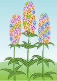 Flores bonitas. Vetor. Fotografia de Stock