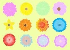 Flores bonitos Fotos de Stock Royalty Free