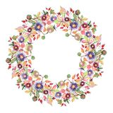 Flores botânicas do ramalhete do áster e do wildflower Grupo da ilustra??o do fundo da aquarela Quadrado do ornamento da beira do ilustração stock