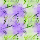 Flores, botões, ramos da ervilha doce Composição decorativa em um fundo da aquarela watercolor Motivos florais Patte sem emenda Imagem de Stock Royalty Free