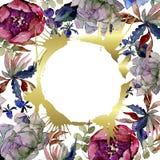 Flores bot?nicas florais do ramalhete Grupo da ilustra??o do fundo da aquarela Quadrado do ornamento da beira do quadro ilustração do vetor