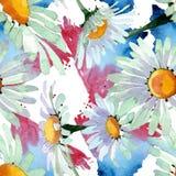 Flores bot?nicas florales de la manzanilla blanca grande Sistema del ejemplo del fondo de la acuarela Modelo incons?til del fondo stock de ilustración
