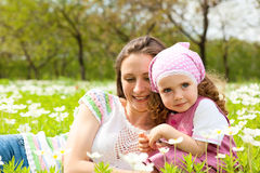 Flores brancas Fotos de Stock Royalty Free