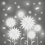 Flores brancas bonitas com sementes do voo Fotos de Stock