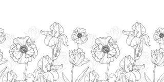Flores brancas do preto do vintage do vetor que tiram o teste padrão sem emenda da repetição da beira horizontal ilustração royalty free