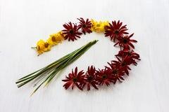 Flores brancas e amarelas vermelhas Imagens de Stock Royalty Free