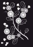 Flores brancas em um fundo preto Ilustração Royalty Free