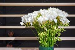Flores brancas em um vaso Imagens de Stock Royalty Free
