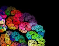 Flores brilhantes coloridas abstratas do Fractal no vagabundos pretos Fotos de Stock Royalty Free