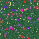 Flores brilhantes de várias plantas no prado Imagem de Stock