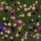Flores brilhantes de várias plantas no prado Fotos de Stock