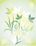 Flores brilhantes do verão. Ilustração Stock