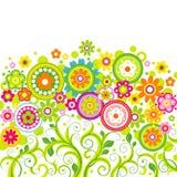 Flores em um fundo branco Ilustração do Vetor