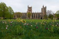 Flores cerca de Bristol Cathedral Imagenes de archivo