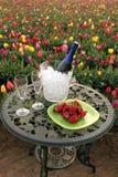 Flores, champanhe e morangos do Tulip ao ar livre Fotos de Stock