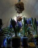 Flores Chenonceau Francia imagen de archivo