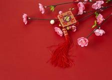 flores chinas del ciruelo del festival del Año Nuevo ilustración del vector