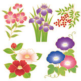 Flores chinesas Imagens de Stock Royalty Free