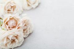 Flores color de rosa del vintage hermoso en la tabla de piedra gris Frontera floral rosada Color en colores pastel fotografía de archivo libre de regalías